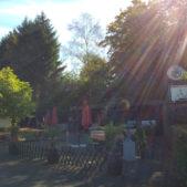Birkenhof Biergarten